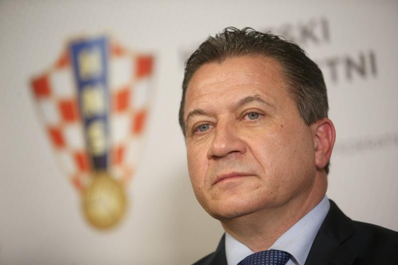 Damir Vrbanović, HNS