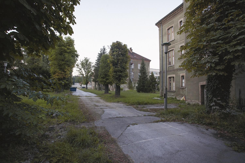 Recentne fotografije unutrašnjosti kompleksa u llici na broju 242