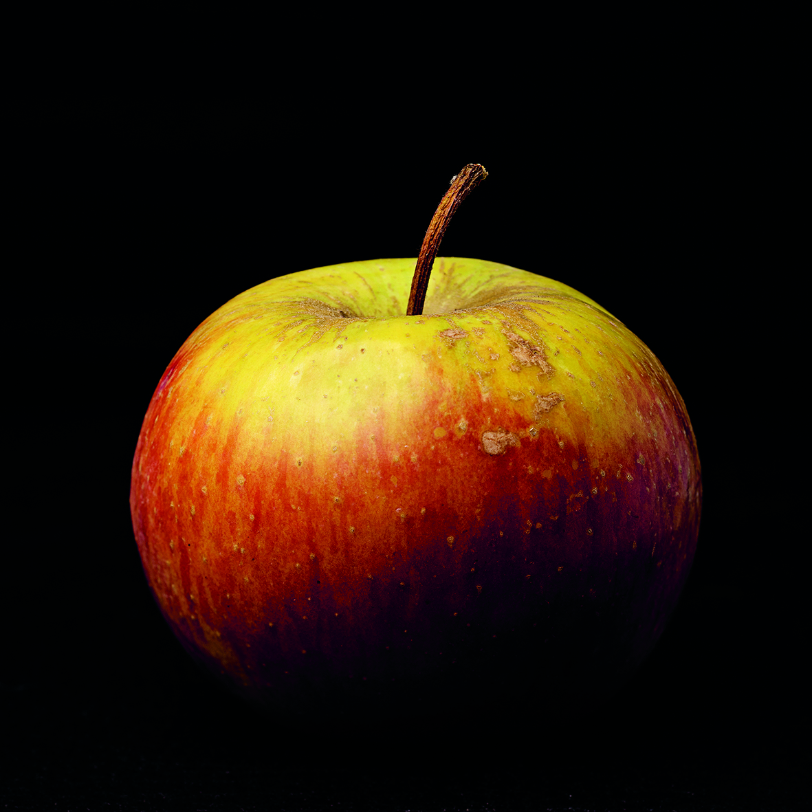 Povrće i voće Svemoguće