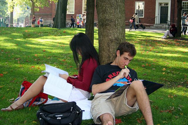 Harvard (Sjedinjene Američke Države)
