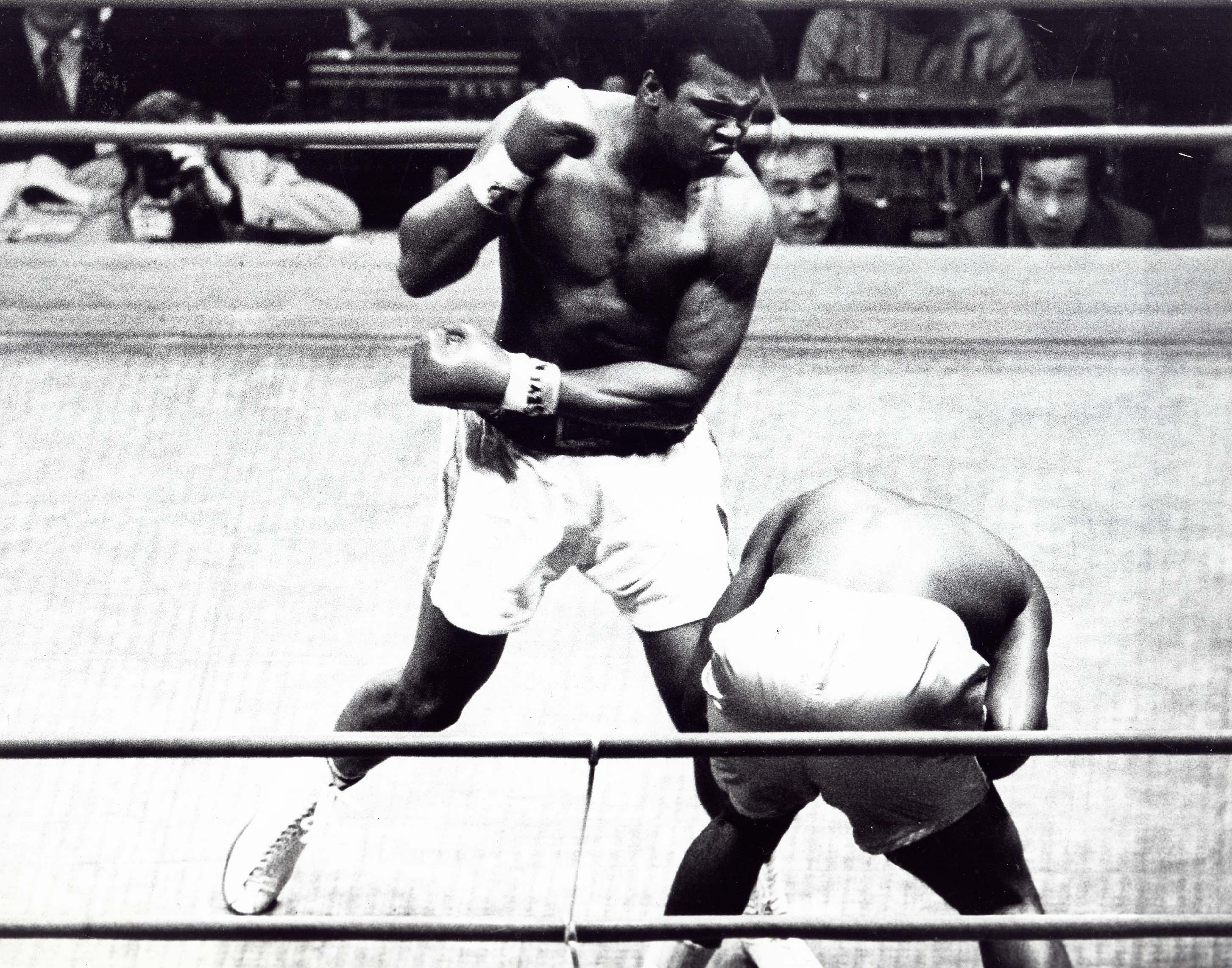 Nov. 30, 1972 - MUHAMMAD ALI wins match with Mac Foster. 1972., Image: 109630873, License: Rights-managed, Restrictions: , Model Release: no, Credit line: Profimedia, Zuma Press - Entertaiment