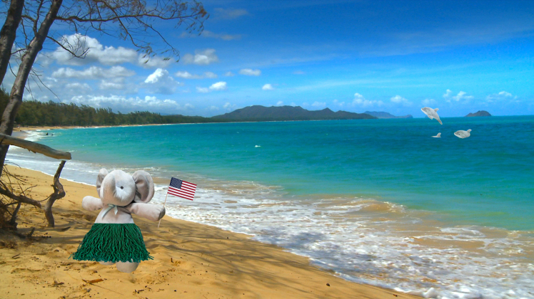 Na plaži na Havajima