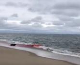 tuljan-otvor1