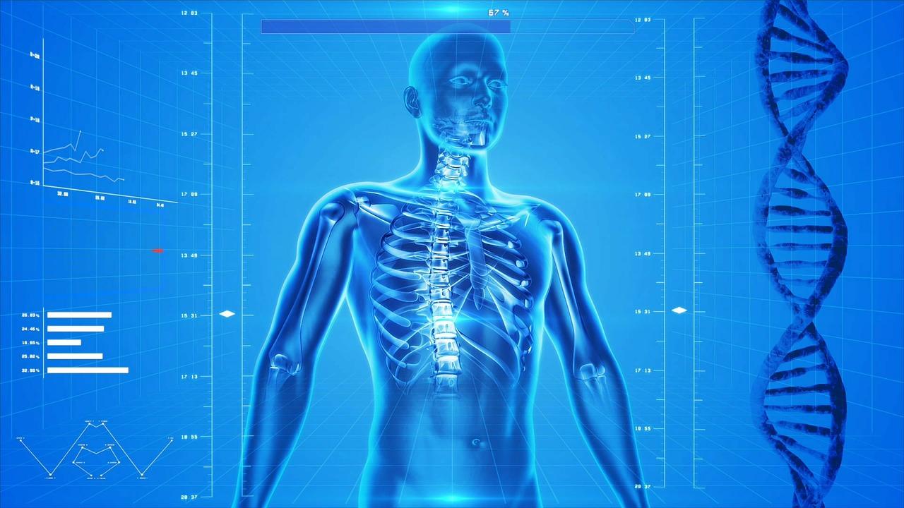 3D prikaz ljudskog tijela