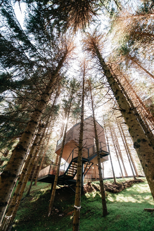 Prije otprilike dva mjeseca završena je gradnja zgodnih kućica na drveću i uz jezero u sklopu Plitvice Holiday Resort koji se nalazi u mjestu Grabovac, osam kilometara od Plitvičkih jezera. Nedavno su unutra napokon odsjeli i prvi gosti.
