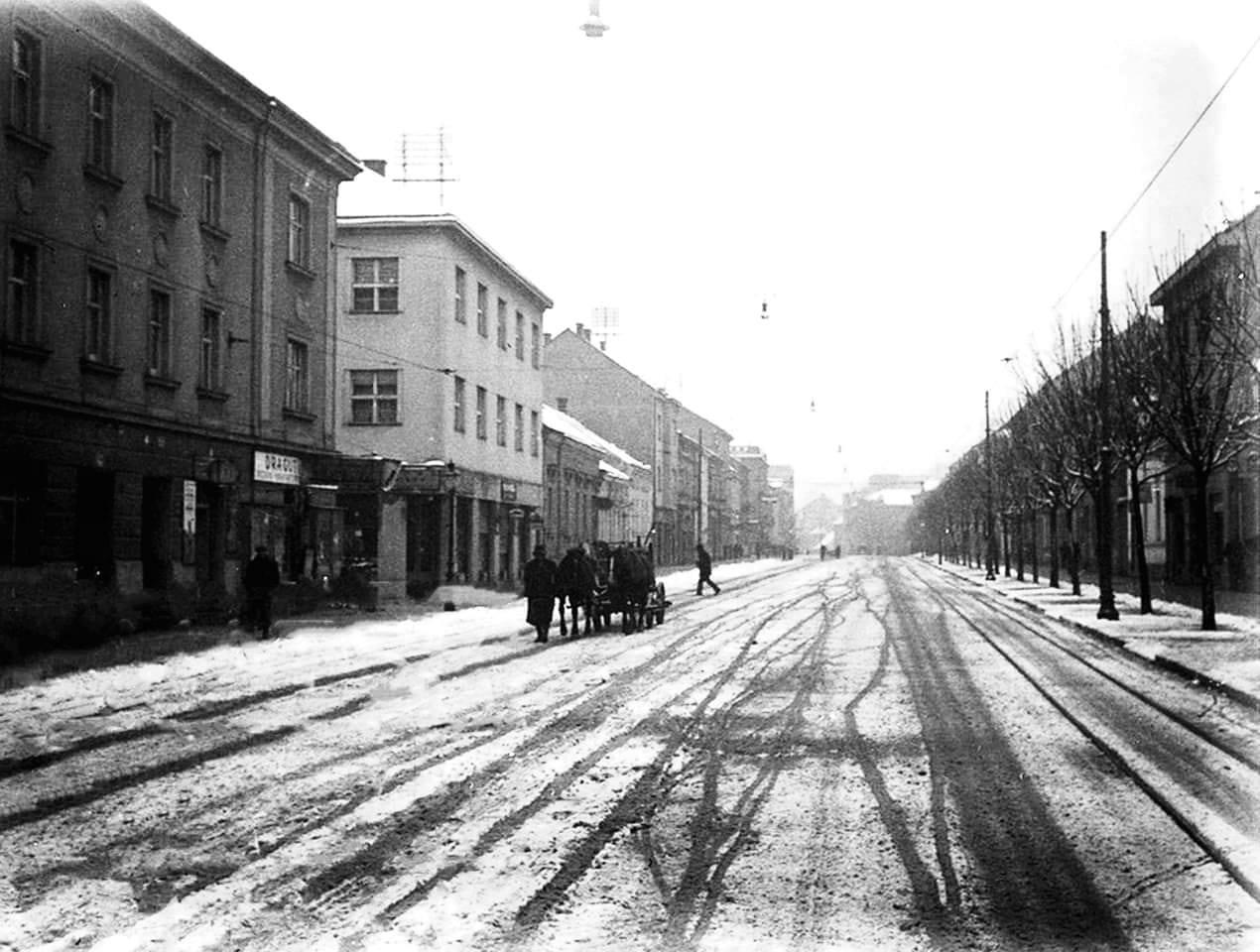 Maksimir 1936. godine