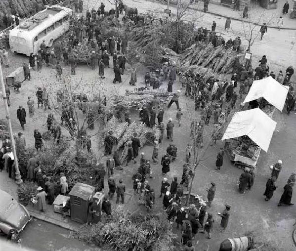 Preradovićev trg 1942. godine